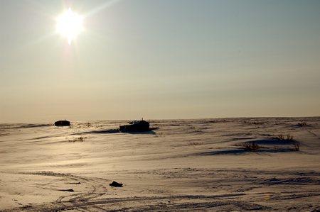 Природа крайнего севера #3