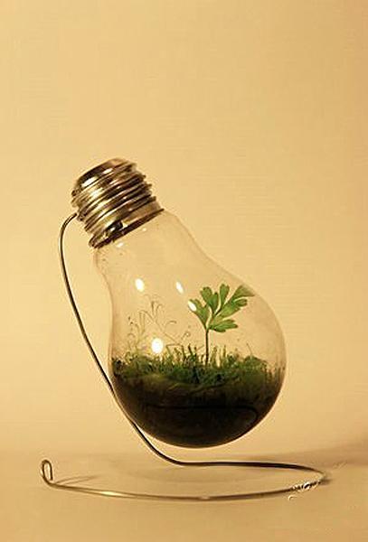 Новая жизнь старых лампочек