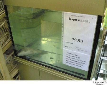 """Из """"Идиотеки"""" Артемия Лебедева"""