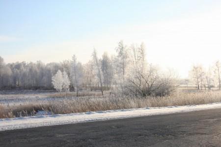 зима тут у нас, в Сибири