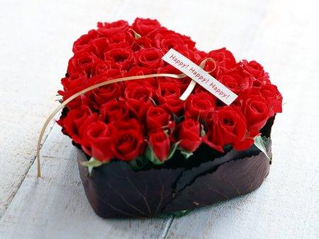 14 февраля - День Святого Валентина на Xeno