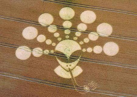 Очередная теория, о кругах на полях.