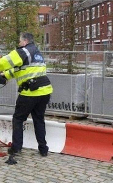Конь положил на полицейского