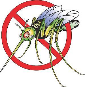 10 народных средств от комаров