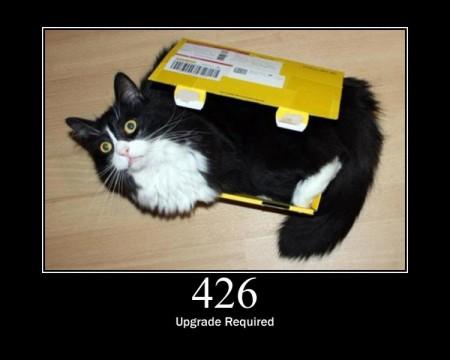 HTTP ошибки и котэ
