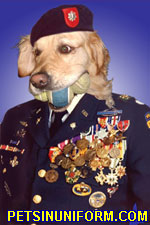 Pets In Uniform