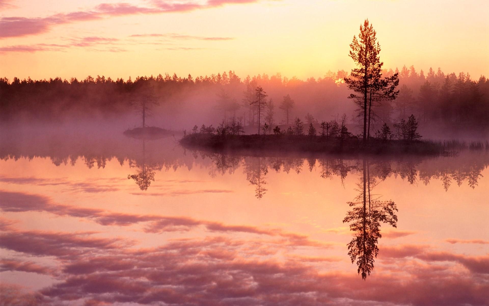 Туман над лесной речкой  № 636705 загрузить