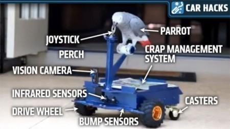 электроскутер для попугая