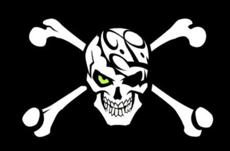 Пиратская партия России запускает хостинг для пиратского контента