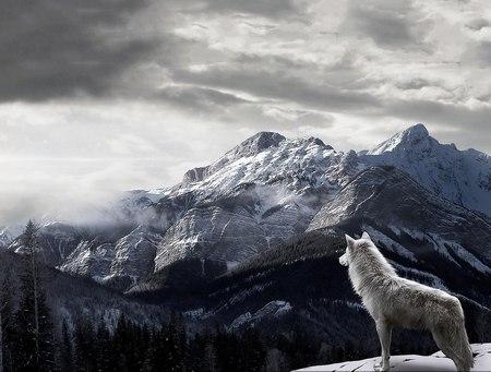 Wallpalerz - Природа - Горы