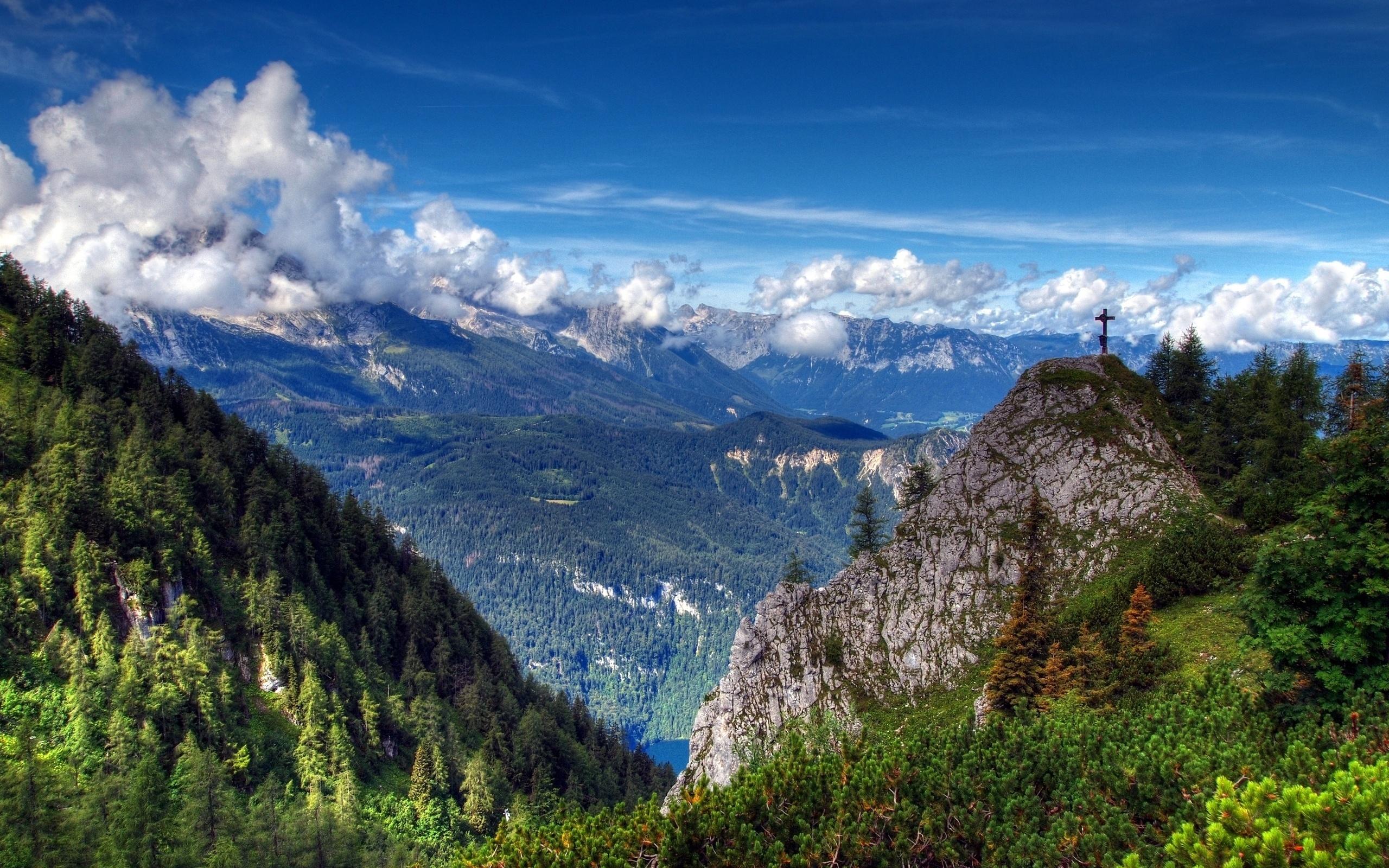 природа лес деревья ели гора облака небо  № 2757454 без смс