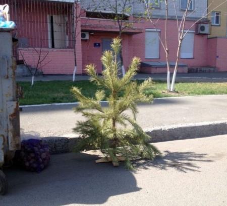 Доп.тупня 29