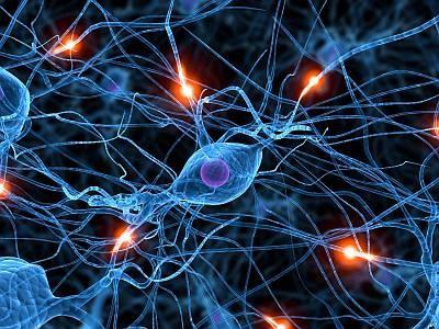 Видеокомпрессия в мозге
