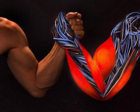 Мышцы из лески