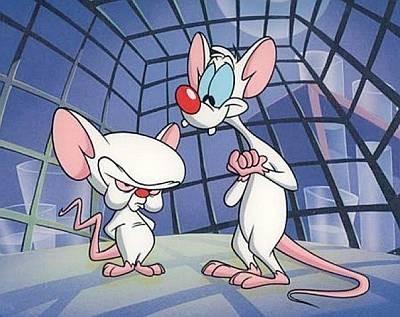 Удалось приживить «искусственные» нейроны в головной мозг мышей