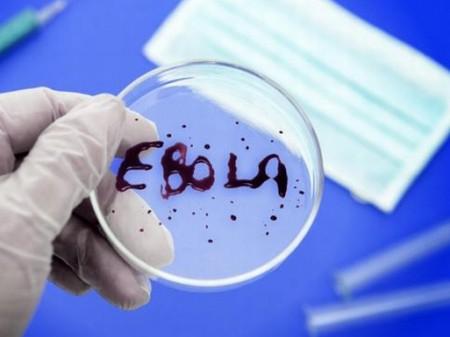 9 причин, по которым Эбола не приведет к концу света