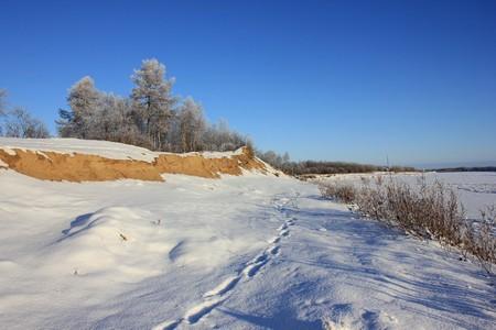 Снежная тундра Октябрь 2014