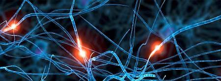 Нейроинтерфейсы, кибермедицина, полный протез тела, протезирование функций мозга