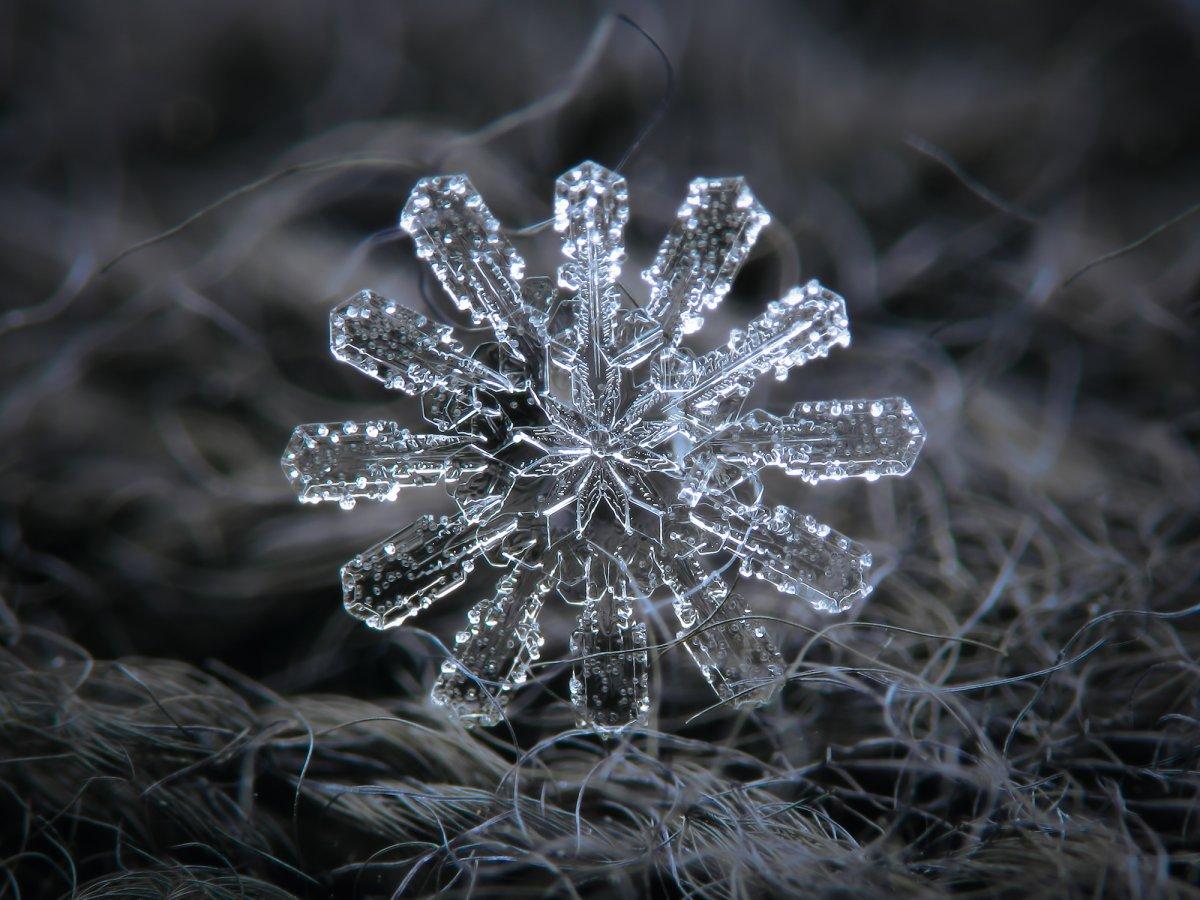 снежинка фото и картинка способны эффектно