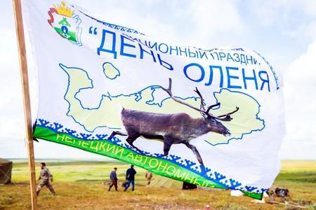 В НАО начнут праздновать День оленя