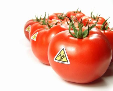 ГМО-продуктам закроют доступ к российским портам