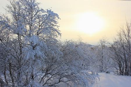 Тундра Февраль 2018 - Снеговики