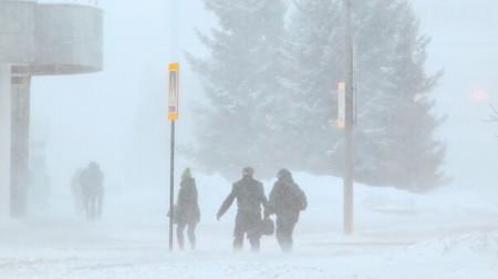 Россиянам разрешили опаздывать на работу из-за плохой погоды