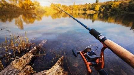 В Росрыболовстве опровергли информацию о том, что рыбалка в РФ станет платной
